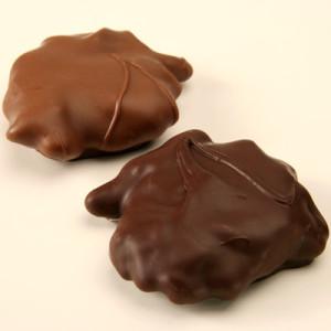 Homemade-Turtles